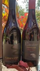 New Release Pinot Noirs-Online specials